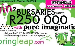 Springleap.com's Pure Imagination Competition